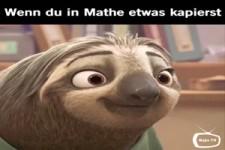 Wenn du endlich was in Mathe begreifst