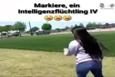 Intelligenzflüchtling