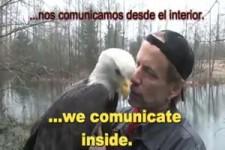 liebe für Tiere