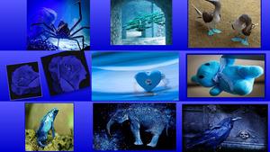 Blau-Blau