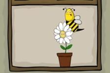 Ich bin eine Biene