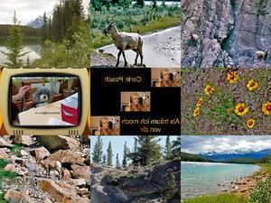 Bilder-Galerie vom 25052017 1 National Park Canada