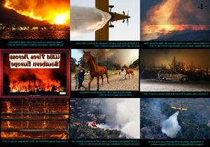Wild Fires in Europe - Waldbrände in Europa
