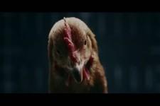 Mercedes - Das Huhn