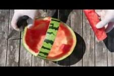 Obstsalat Wassermelonen Picknickkorb.