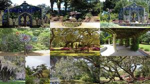 USA Airlie Gardens Wilmington.Erika