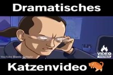 Dramatisches Katzenvideo