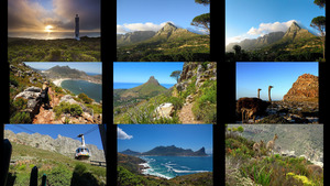 Table Mountain National Park South Africa - Tafelberg