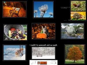Automne & Hiver - Herbst und Winter