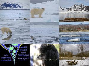 Bilder-Galerien vom 08082017 4 Schnee und Eis Landschaften