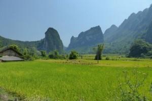 Impressionen aus Vietnam 1