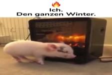 Ich im Winter