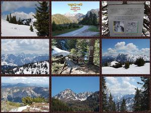 Der Geiger in Wildalpen Steiermark