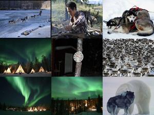 Reise in den Norden- Lappland