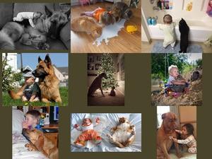 Kinder und Tiere3
