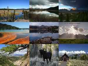 Yellowstone-dd