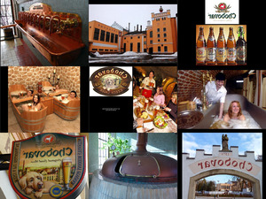 Chodovar Brasserie1