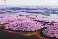 Sehenswürdigkeiten Chinas im Frühling