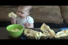 Baby isst Stinkfrucht