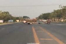wild gewordener Holz-Transporter