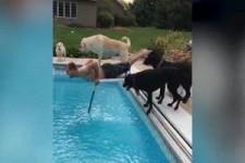 Und ab in den Pool