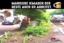 Merkels Fachkräfte