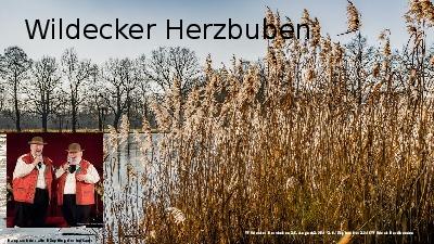 Jukebox - Wildecker Herzbuben 001