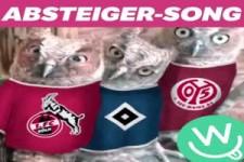 Absteiger-Song