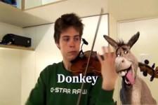 Tiergeräusche mit der Geige