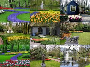 Frühling in Holland