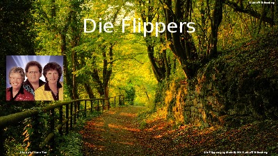 Jukebox - Die Flippers 002