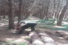 So macht Mann Holz
