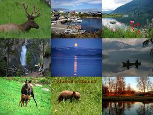 Canadas Beauty1