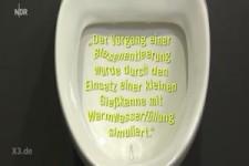 Flecken auf der Toilette