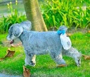 Hundekot-Beutel zum Ranclipsen!