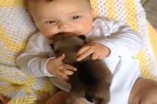 Ein Welpe und sein Baby