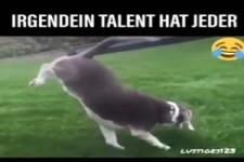 Irgendein Talent hat jeder