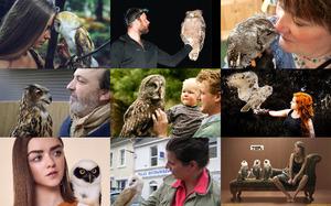 Owls and Humans - Eulen und Menschen