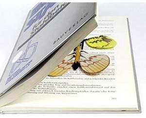 Fliegender Schmetterling!