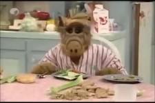 der gute alte Alf