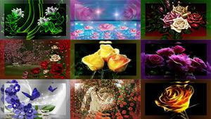 Artistic Flower 1