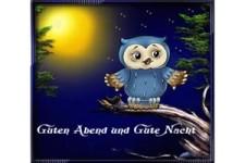 Gute-Nacht-Gruß