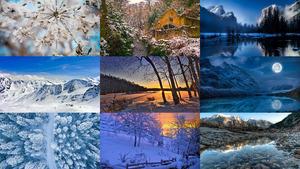 Winter 46