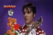 Elvis Teddy Bär