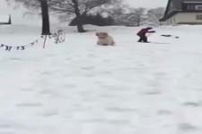 Ich gehe auch Schnee rutschen