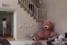 Lustiger Bär