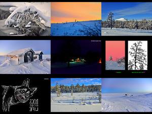 FvK - Idre Fjaell und Fulufjaell - Schneeschuhtour