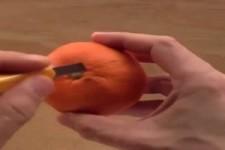 Mandarinen-Kunst