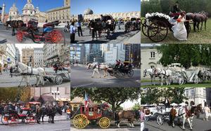 Horse & Carriage - Pferdewagen