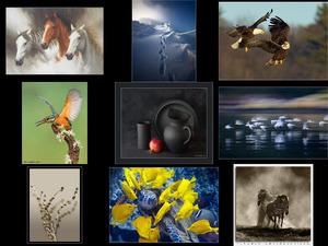 040-Natur - Photos zum Nachdenken - Musik